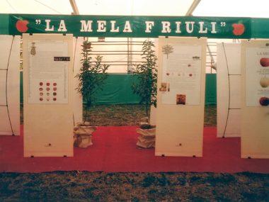 mostra La mela Friuli