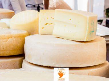 FilSapori18-formaggi