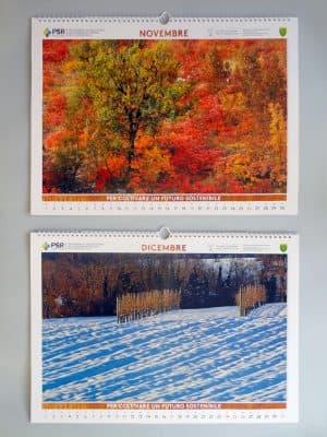 Novembre   Colori autunnali del Carso presso Malchina (Ts);  Dicembre   Le colline moreniche a Modotto (Udine)