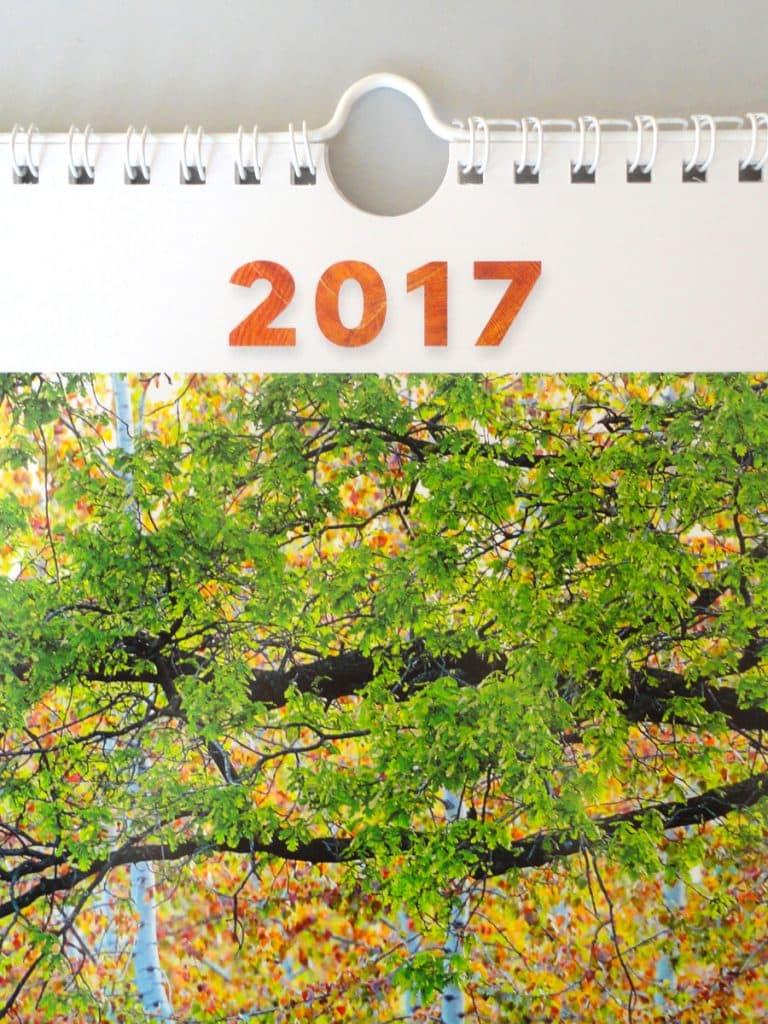 Calendario Particolare.Calendario 2017 Regione Fvg Psr 2014 2020 Studio