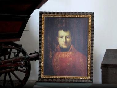 I quadri animati | Napoleone Bonaparte